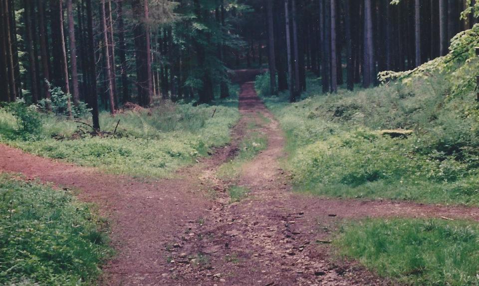 Wenn der Weg mal schwer zu finden ist ...